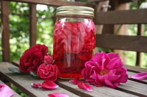 Cách làm hồng nhũ hoa sau sinh bằng nước hoa hồng